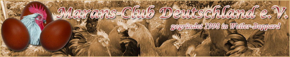 http://www.marans-club.de/images/wiese.jpg